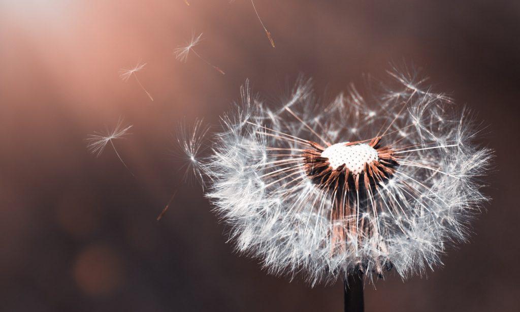 Dojrzałość duchowa, a duchowe cele