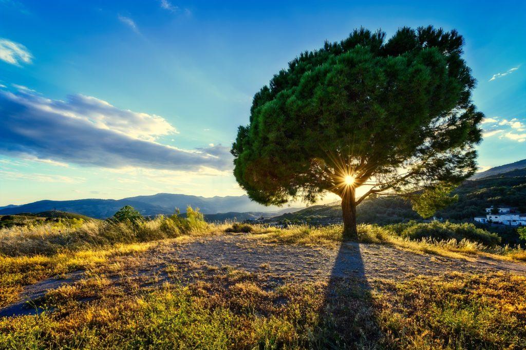 Zachodnie podejście do ezoteryki